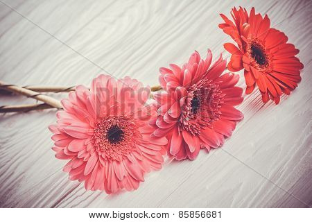colorful gerbera flowers on the  wooden table