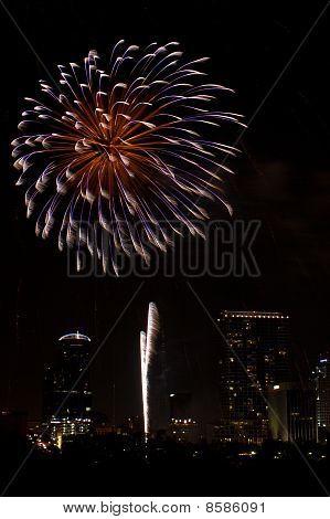Wavy Firework Burst