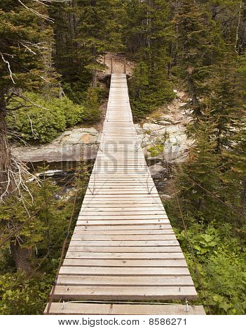 Wood Bridge In Glacier National Park