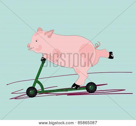 illustration of a pig