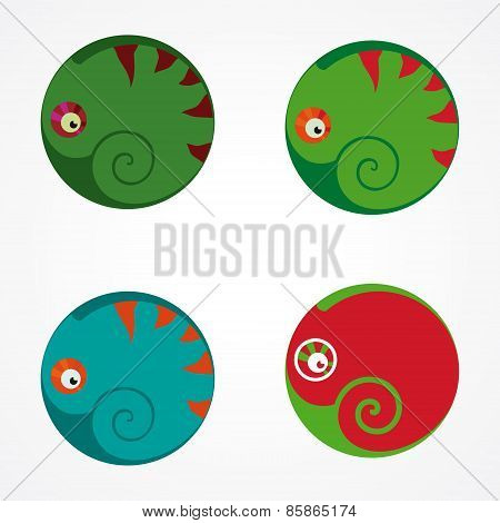 illustration with chameleon