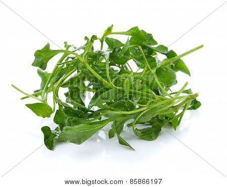 Fresh Watercress On White Wooden