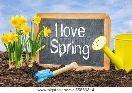 Sign In The Flower Bed With The Text I Love Spring