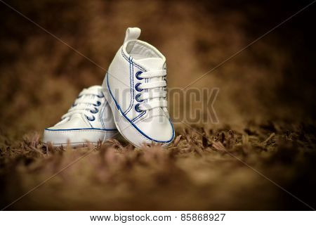 Isolated Baby Boy Shoes