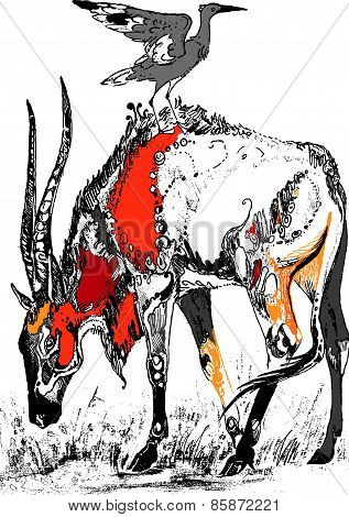 Colored antelope
