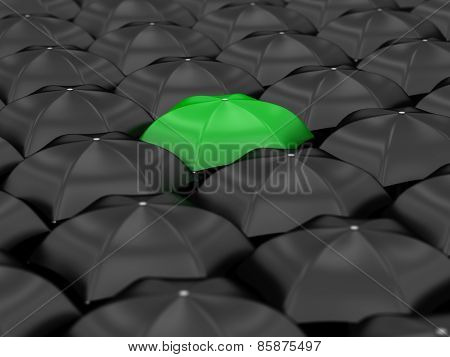 Unique Green Umbrella
