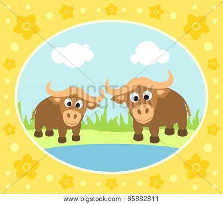 Safari background with buffaloes