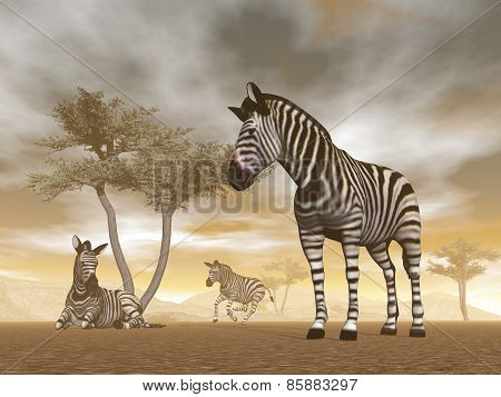 Zebras in the savannah - 3D render