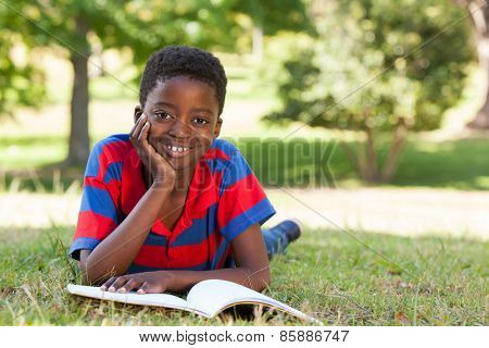 Little boy reading in the park on a sunny day