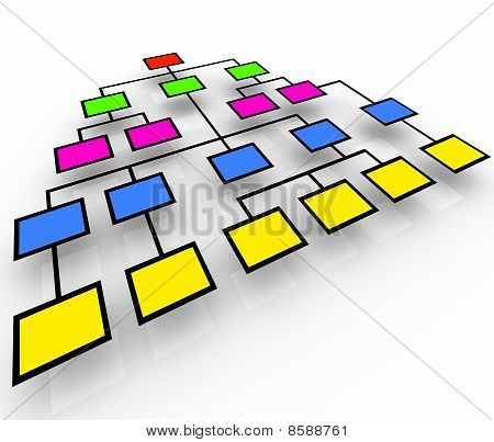 Organizational Chart - Colorful Boxes
