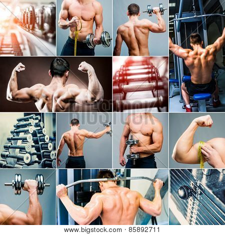 collage of photos muscles, bodybuilding and weightlifting