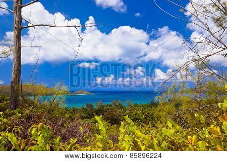 Landscape of island Praslin Seychelles - vacation background