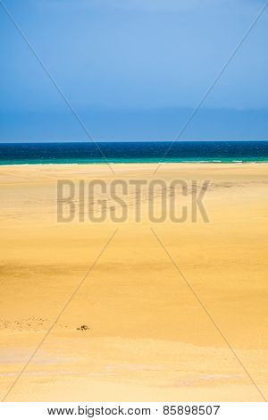 Natural beach on Fuerteventura island, Canary