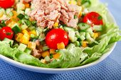 pic of celery  - Green salad leafs with cucumber yellow pepper celery stalks cherry tomatoes and tuna fish - JPG
