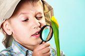 image of child development  - Children development - JPG