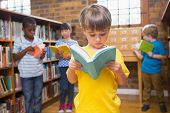 picture of pupils  - Cute pupils reading books at library at elementary school - JPG