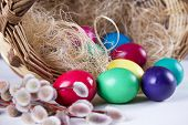 stock photo of willow  - Wicker basket with colored eggs and willow branches on a white background - JPG