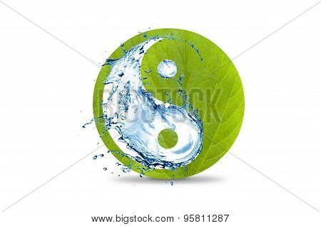 Yin And Yang Symbol Green With Water