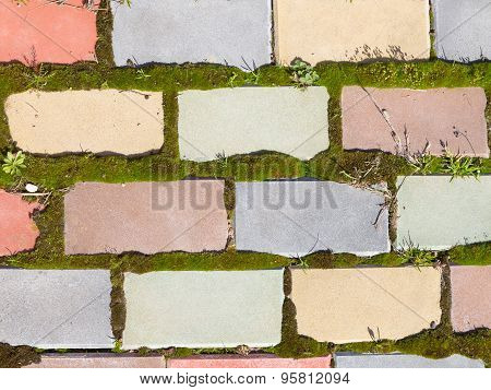 Track From Multi-colored Brick And Moss