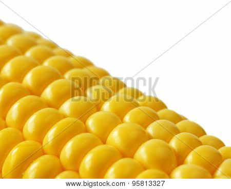 Closeup sweetcorn cob on white