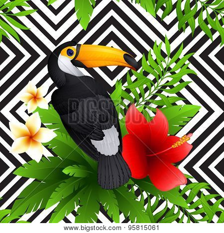 Vector tropical pattern with toucan and  hibiscus, frangipani flower, palm leaves , black and white