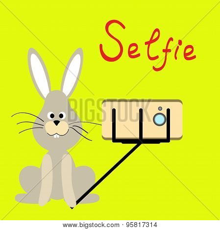 Pets selfie. Funny animals on a colored background. Vector. rabbit . Flat.