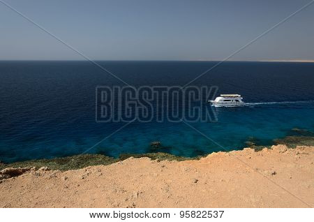 Coast In Egypt. Red Sea