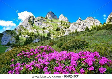Top mountain landscape