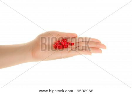 Woman's Hand With  Red Pills