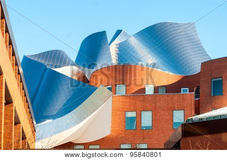 Gehry Architecture