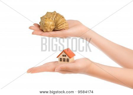 Woman's Hands With Little House And Conch