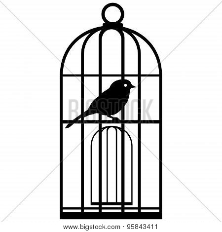 Cage With Birds-2
