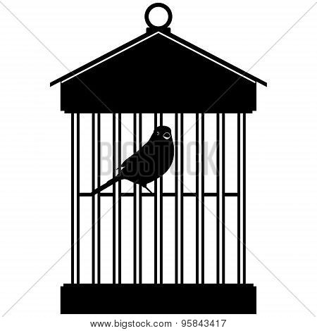 Cage With Birds-3