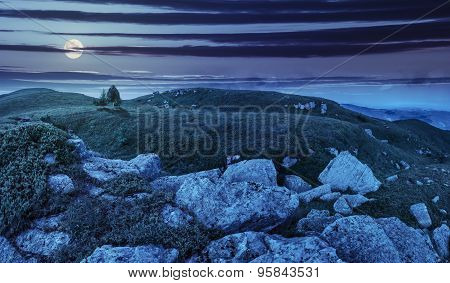 Trees On Hillside Among Huge Boulders At Night