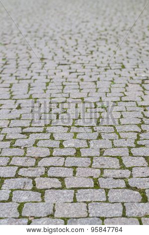 Cobblestone Pavement With Moss Growing Between Stones, Blurred Background