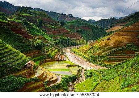 Rice fields on terraced in rainny season at Mu Cang Chai, Yen Bai, Vietnam.