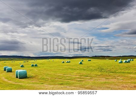 Mown grass folded into a neat stack and packed in special bags of plastic. Rural field after harvest