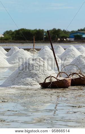 Salt Farm