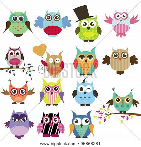 Set Of Owls On A White Background