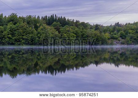 Shoreline At Misty Morning