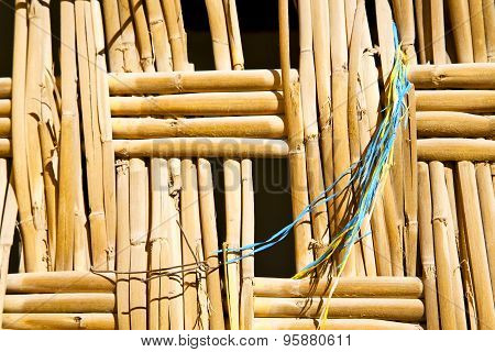 Texture Bamboo In Morocco Blue
