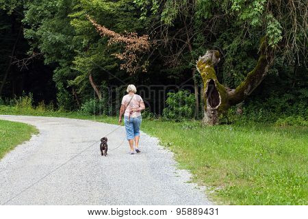 Woman walking a dog in the park