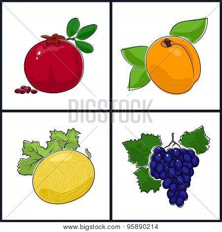 Apricot, Pomegranate,melon,grapes