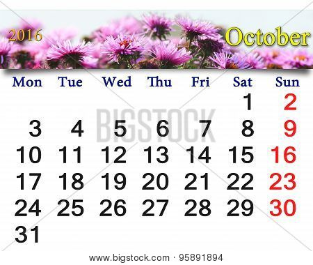 Calendar For October 2016 With The Pink Asters