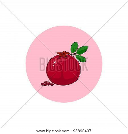Icon Colorful Pomegranate