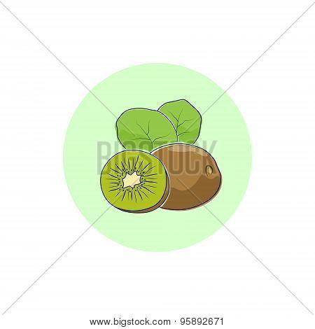 Icon Colorful Kiwifruit