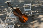 foto of cello  - cello or contrabass left out on the street before playing - JPG
