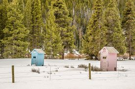 foto of outhouse  - Blue and pink outhouses at a campground make it easy to tell where the boys and girls should go - JPG