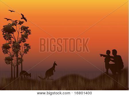 Family Kangaroo Sunset