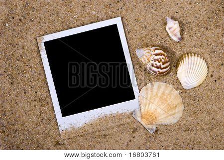Bilderrahmen mit Muscheln auf Sand Hintergrund